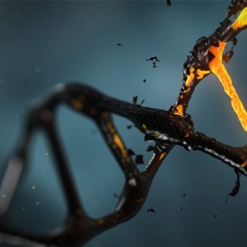 O testach DNA słów kilka