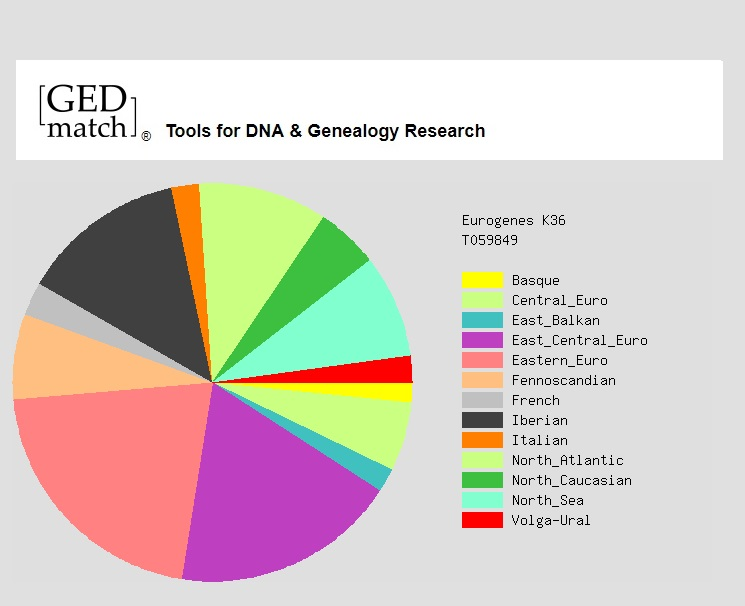 GEDmatch – dalsza analiza DNA