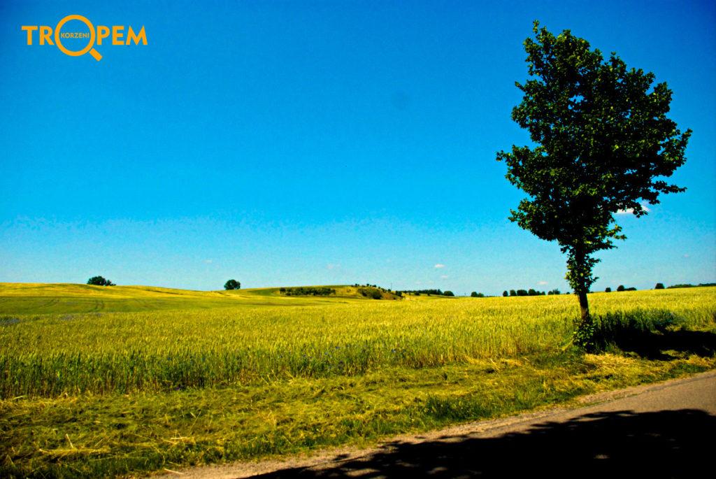 Piękna okolica iwzgórza morenowe.