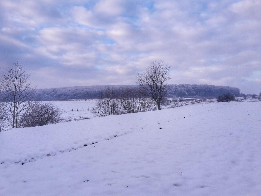 Zimowe krajobrazy wZarudcach.