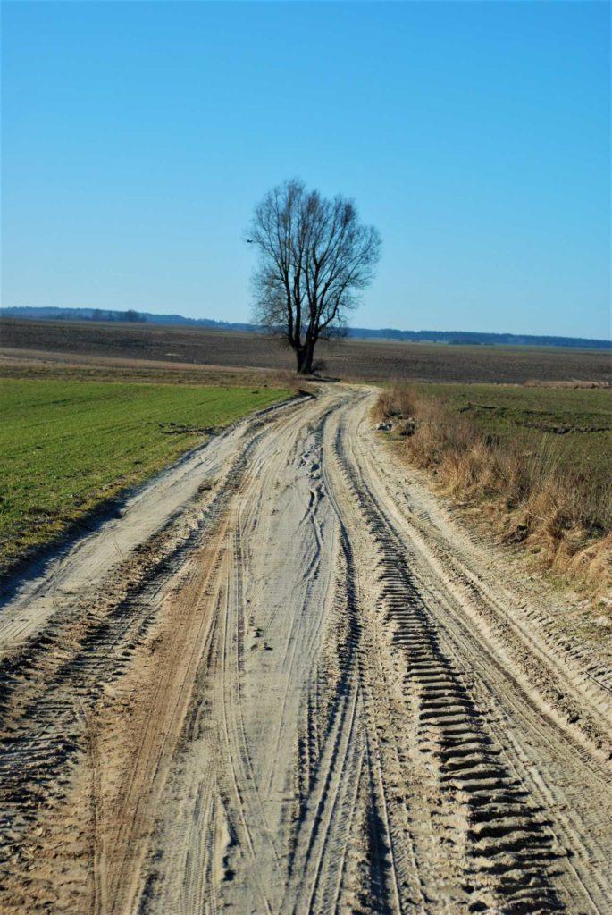 Polne drogi albobyły grząskie albotwarde jak skała